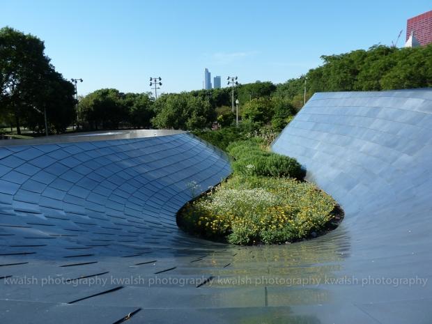 Chicago Garden