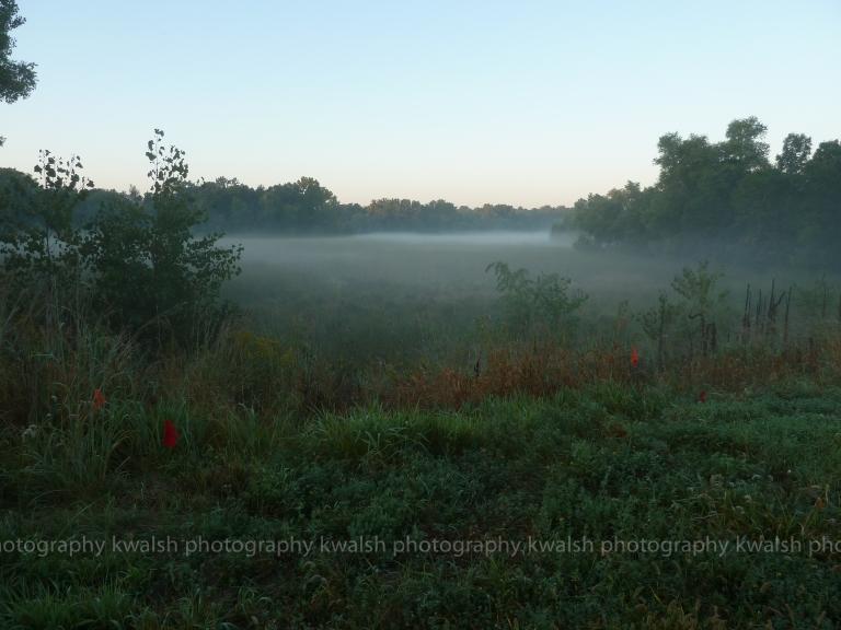 Morning Fog  ©kwalsh photography 2011