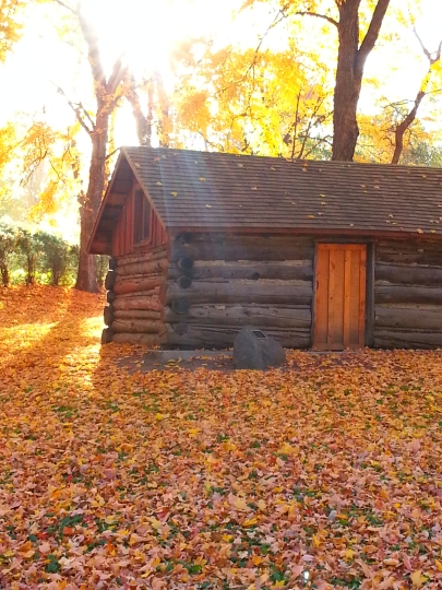 Log Cabin Wayzata ©kwalshphotography 2015