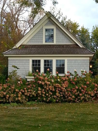 Hydrangeas and Cottage Wayzata MN ©2015 kwalshphotography