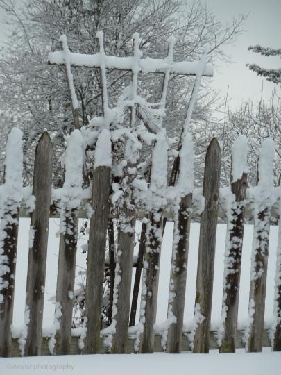 Snowy Fence in Minnetonka Minnesota ©2015 kwalshphotography